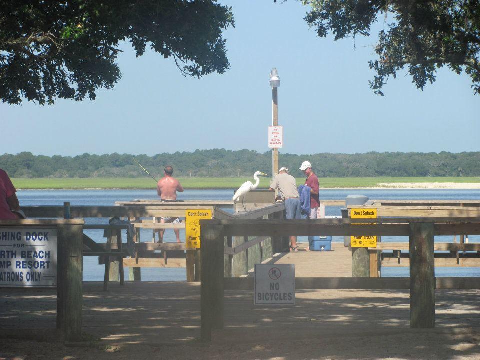 men standing on dock