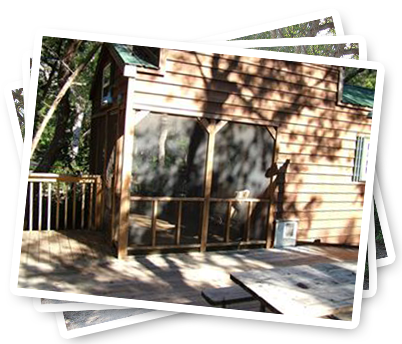 Cabins  sc 1 th 208 & North Beach Campground | Premier St. Augustine Florida Camping ...